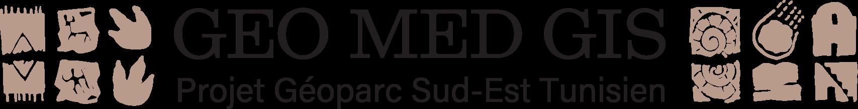 logo GEO MED GIS projet