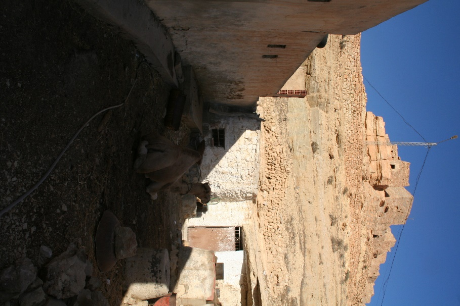 Huilerie D'Ouled Ali à Cheninni