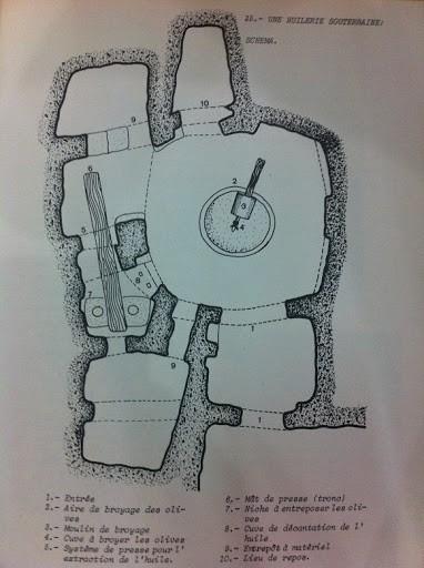 Organisation des espaces de la huilerie traditionnelle