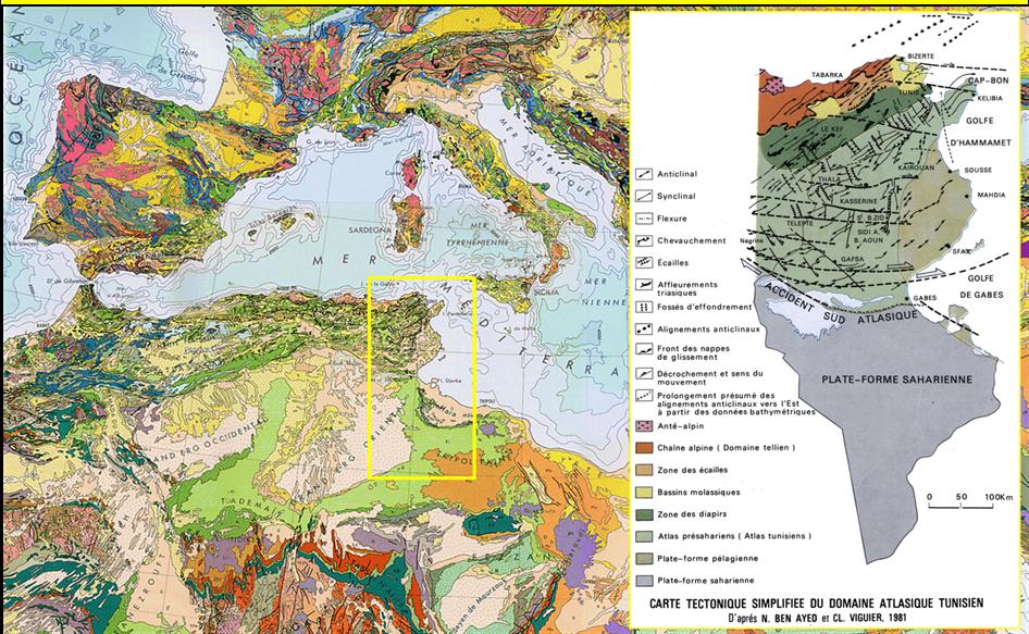 Figure 1- Position de la Tunisie et répartition des domaines morpho-structuraux